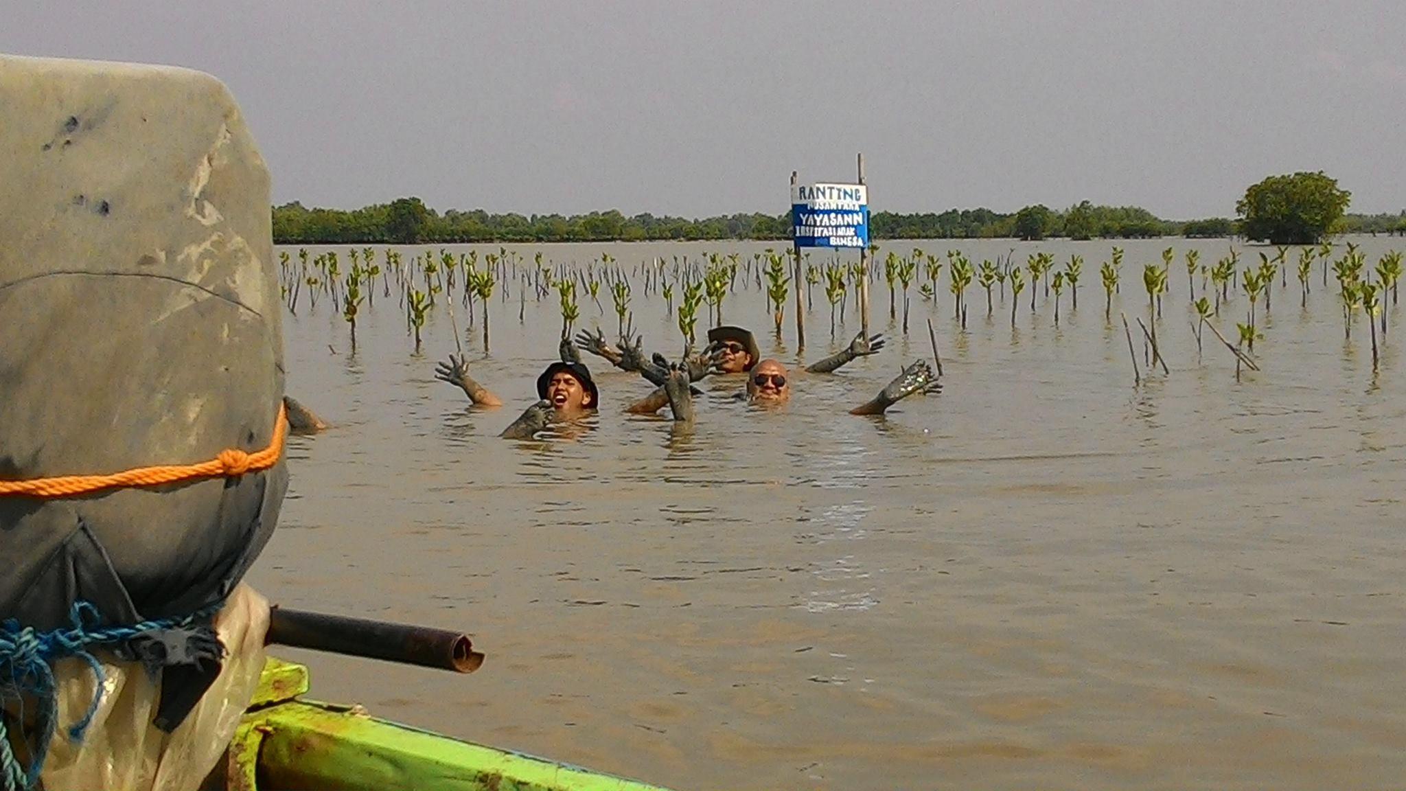 Mangrove Marine conservation