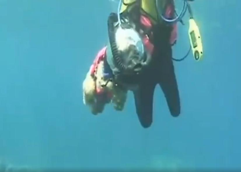 dog-scuba-diving