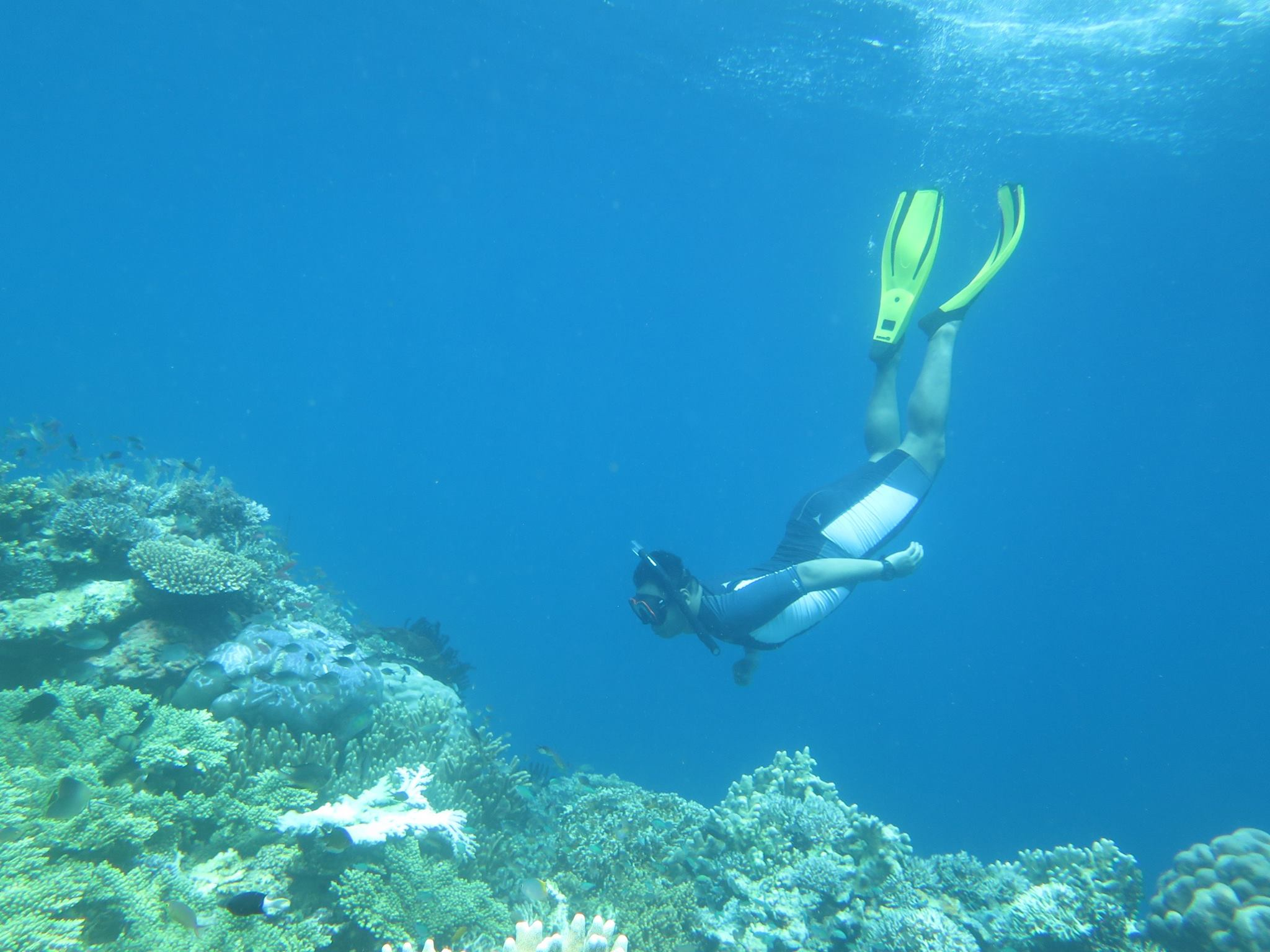 labengki-best-place-in-the-world-to-scuba-dive-with-easy-snorkling-gear