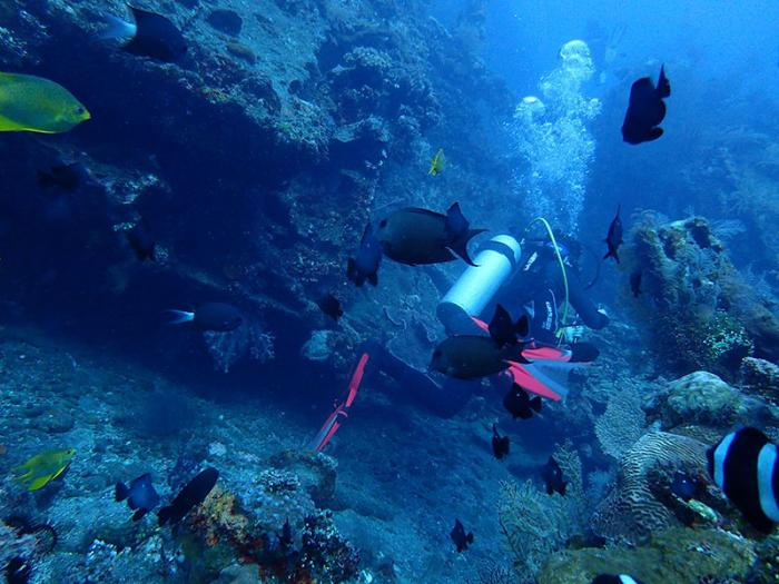 water-temperature-diving-amed-bali