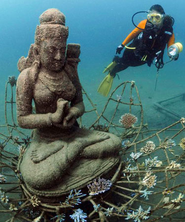 water-temperature-in-bali-buddha-best-diving-bali