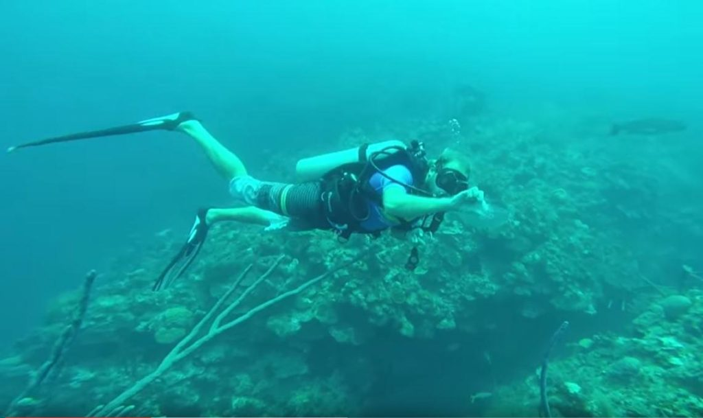 Careers That Involve Scuba Diving
