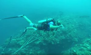 careers-that-involve-scuba-diving