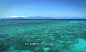 Facts great barrier reef conservation