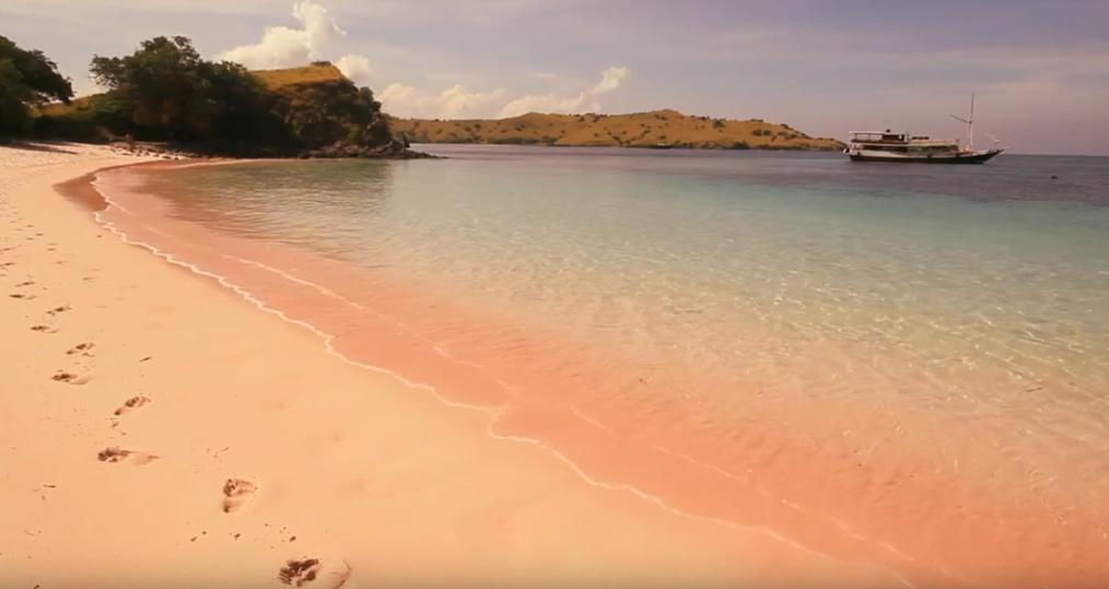Pink Beach flores komode island