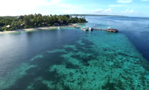 Wakatobi Liveaboard Worthy Being Awarded Top 5 World Diving Destinations in 2017