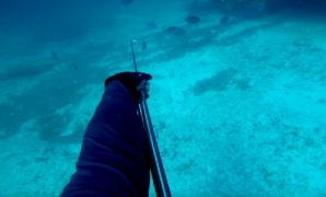Spearfishing with Hawaiian Sling
