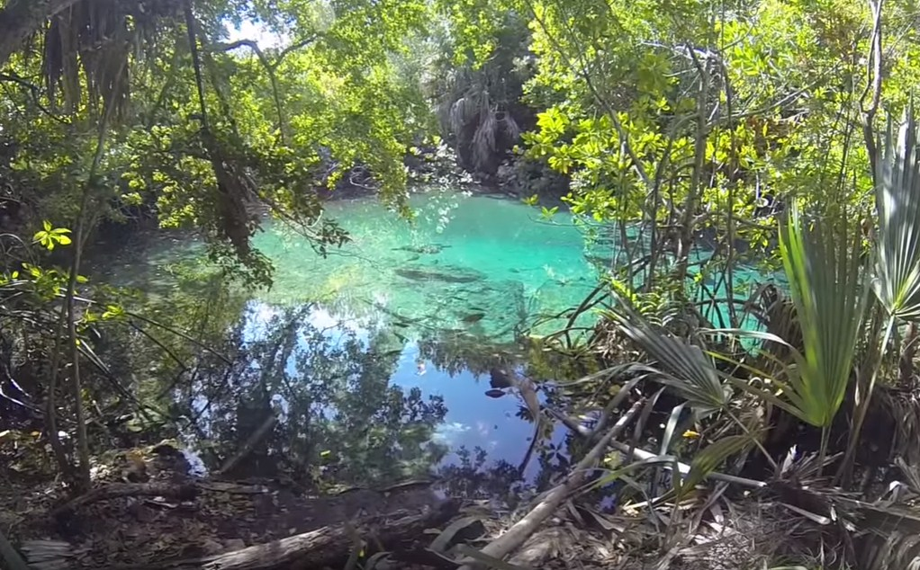 Blue Hole The Geeky Scuba Diving in Punta Cana, Dominican Republic