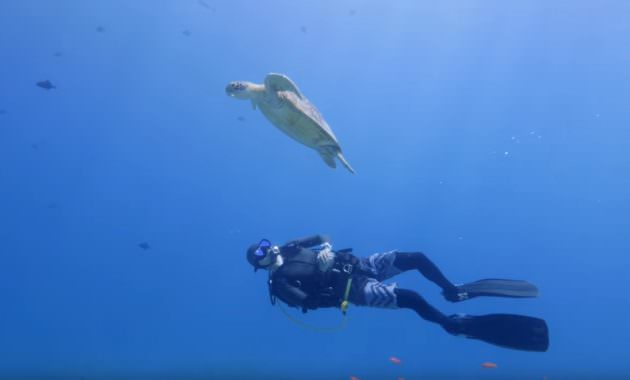 Having Vacation Fun at the Scuba Diving Best Places