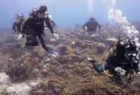 PADI Open Water Diver certification will send you on your way to many exciting underwater adventures