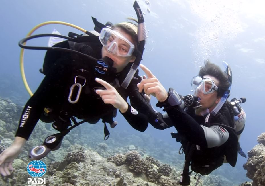 PADI Scuba Diving Certification Massachusetts