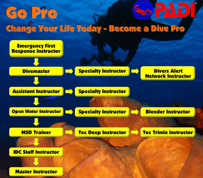 PADI Scuba diving certification st louis