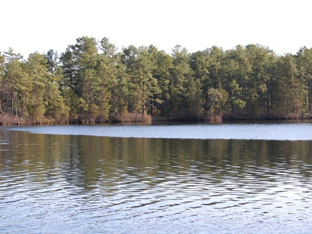 Atsion Lake|