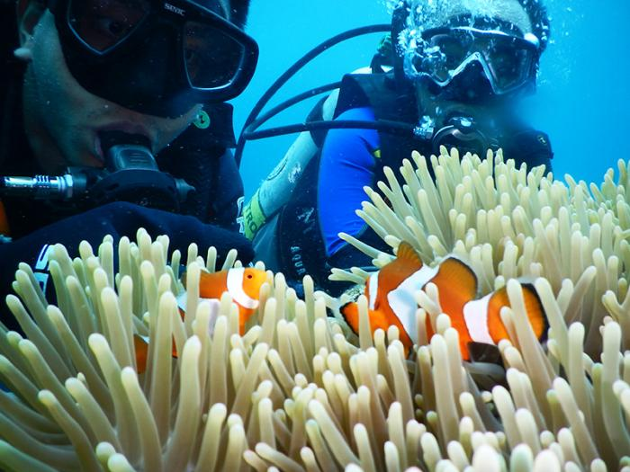 water-temperature-best-time-to-dive-in-bali