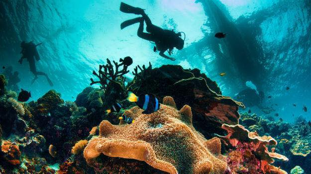 karnataka-deep-sea-diving-in-india