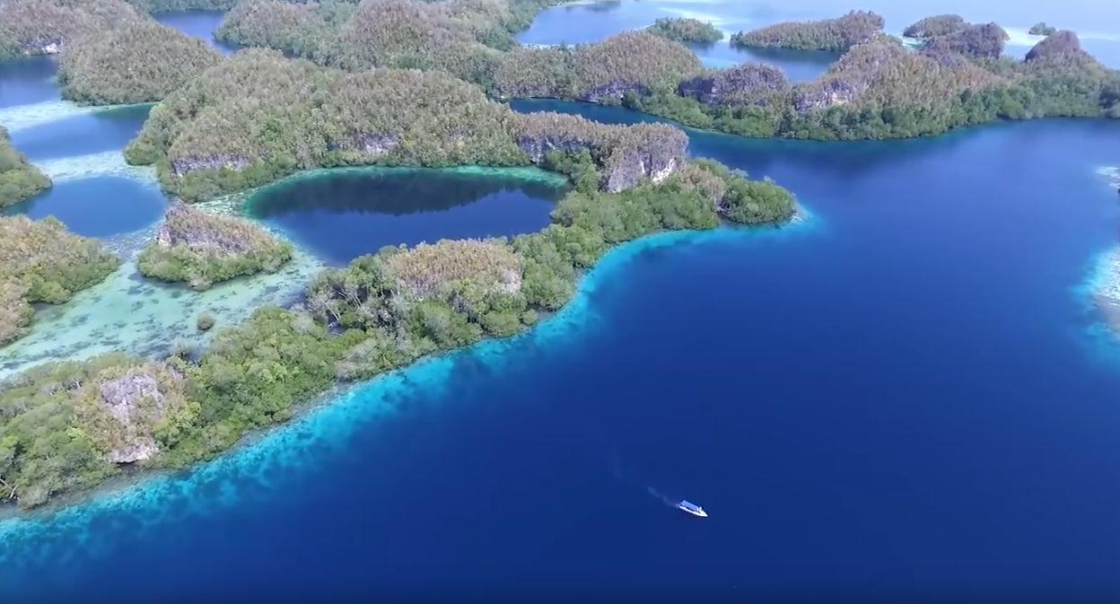 raja-ampat-diving-packages