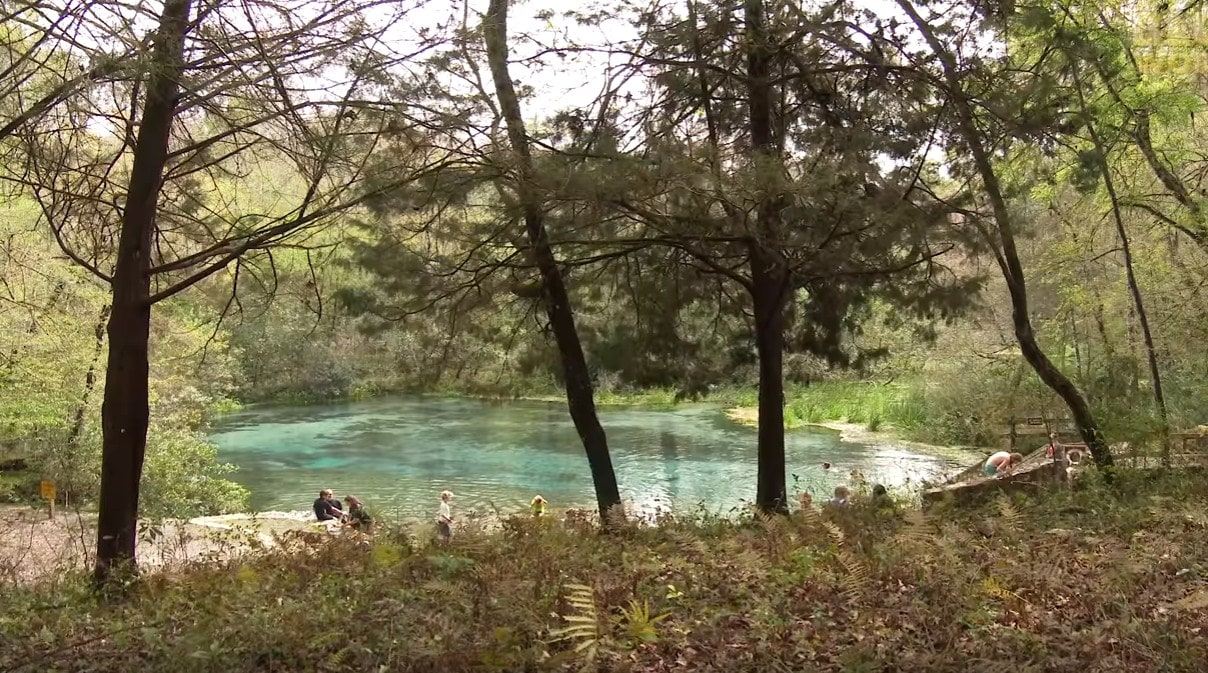 Cave Diving florida Ginnie Springs