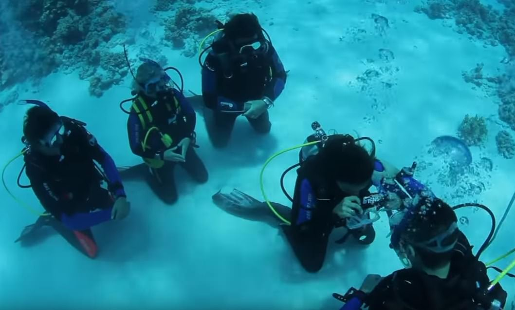 How to get certified in scuba diving