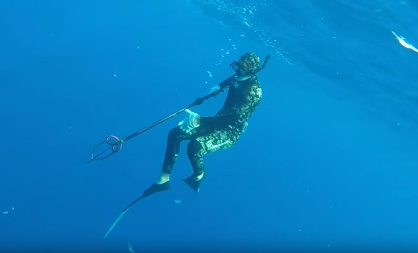 Spearfishing Hawaii Kauai Guide to Find All The Typical Reef Fish