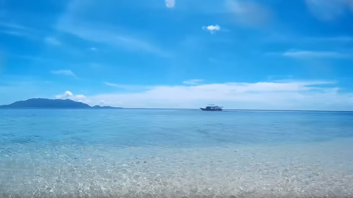 Banda Islands Dive Bluemotion Ambon Indonesia