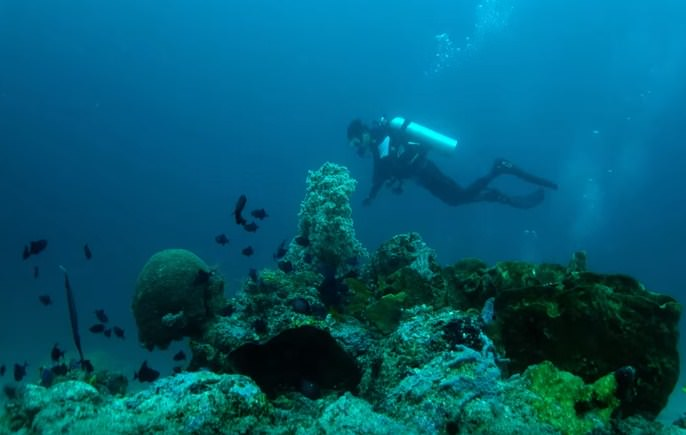 Laha diving point is in Ambon Bay