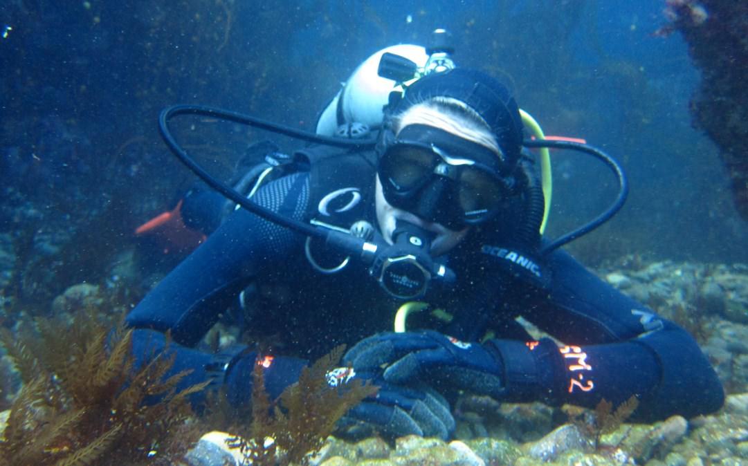 Scuba Diving Certification Santa Barbara